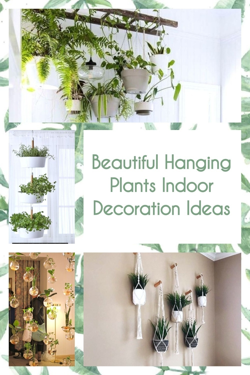 Beautiful Hanging Plants Indoor Decoration Ideas