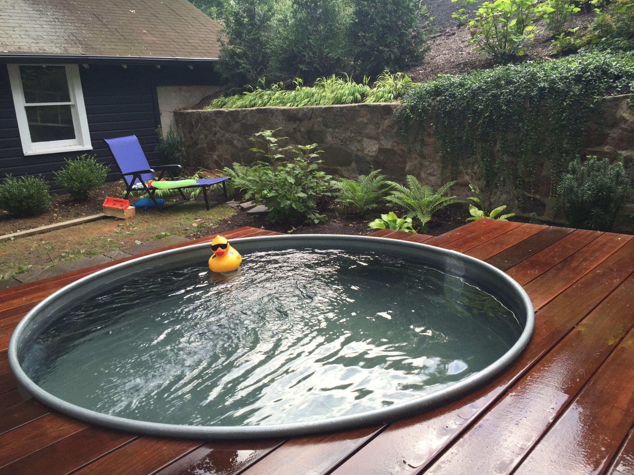 Water Trough Swimming Pool