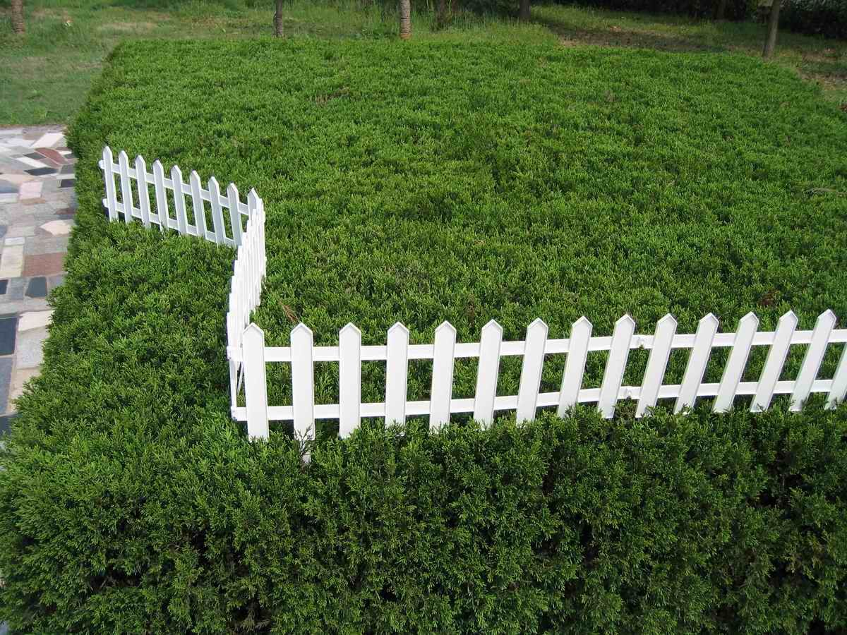 Small Decorative Fencing For Garden
