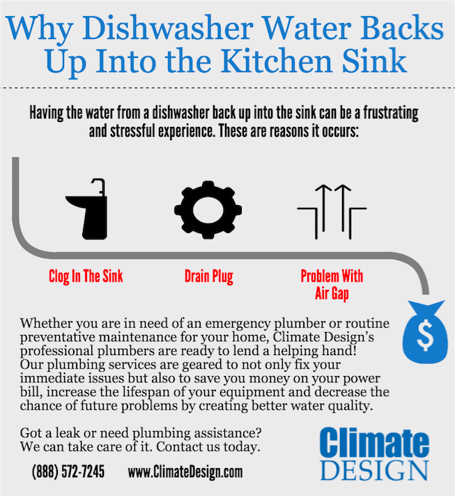Kitchen Sink Backing Up