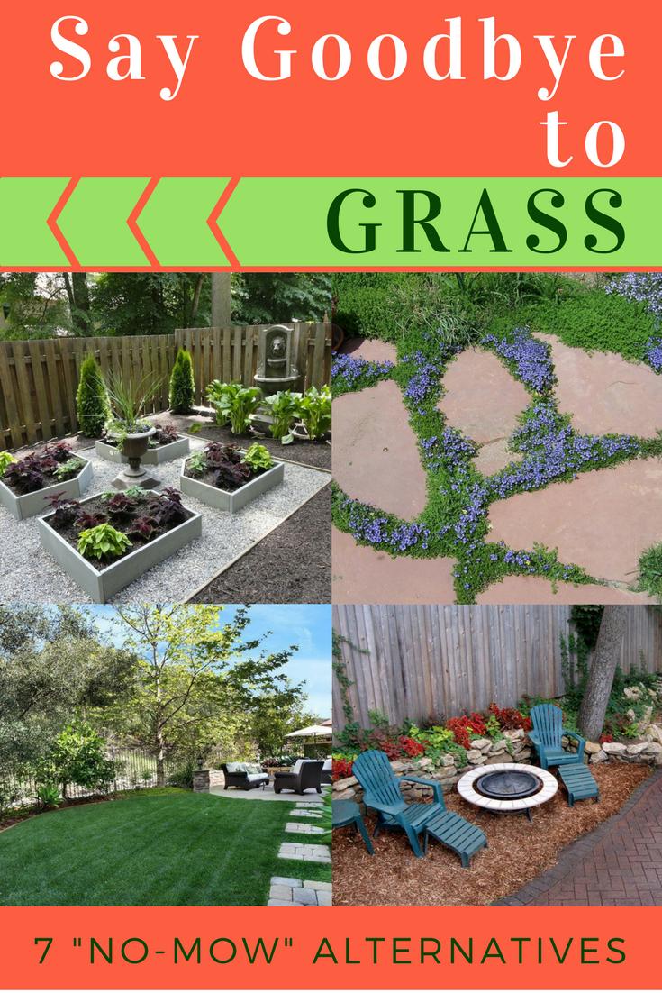 Alternatives To Grass In Backyard